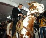 Viggo Mortensen arrives at the Hidalgo premiere astride TJ, one of the horses who played the title role of Hidalgo.