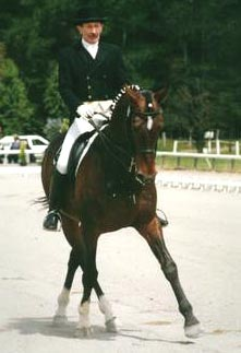 Uraeus, who played Brego, competing in dressage